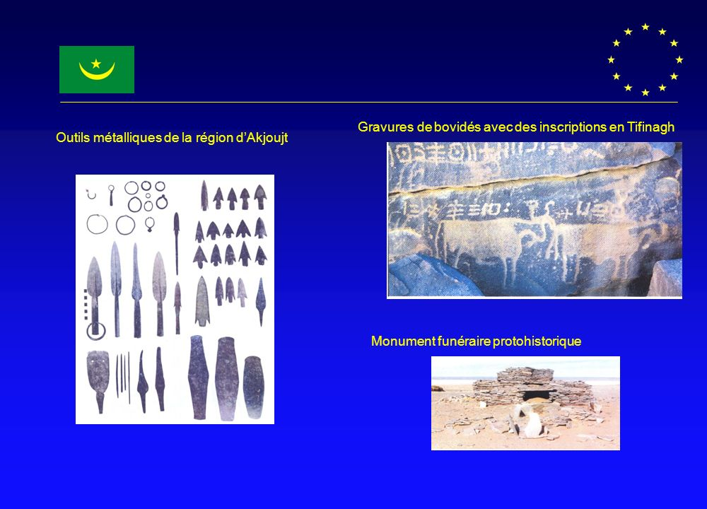 Gravures de bovidés avec des inscriptions en Tifinagh