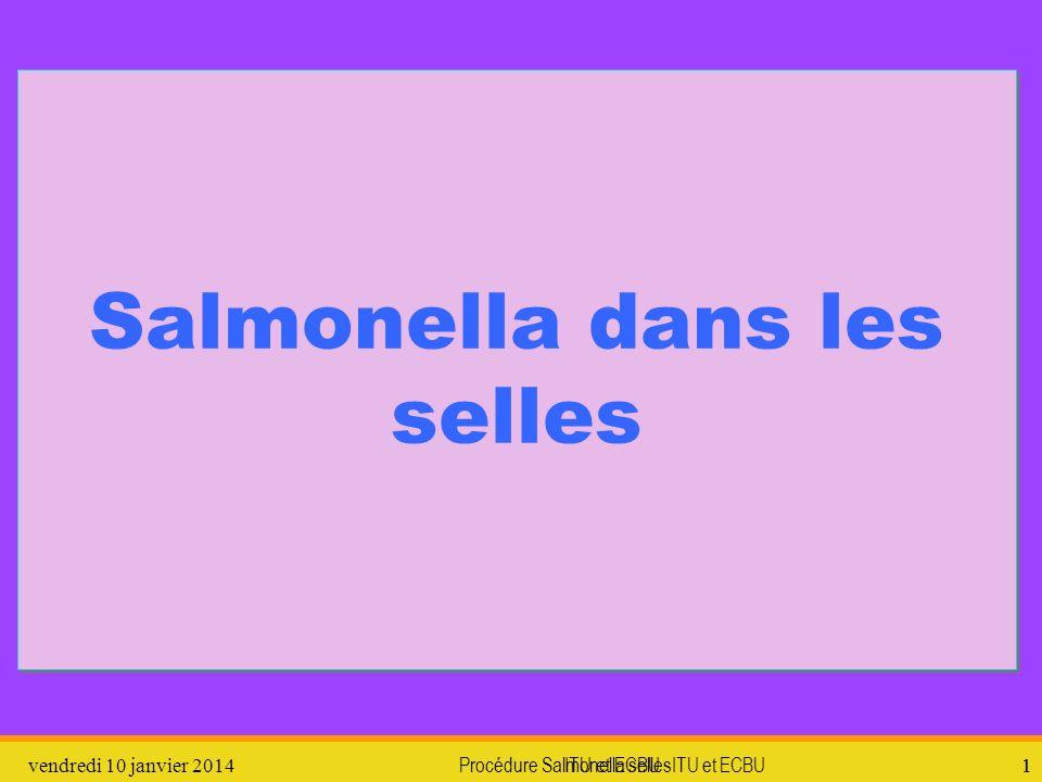 Salmonella dans les selles