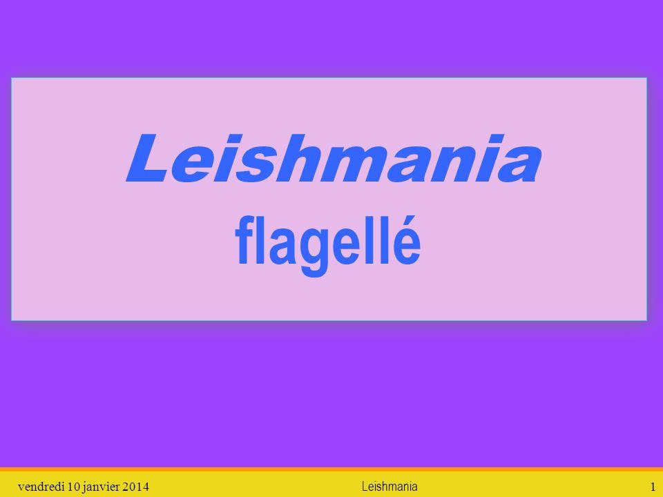 Leishmania flagellé dimanche 26 mars 2017 Leishmania
