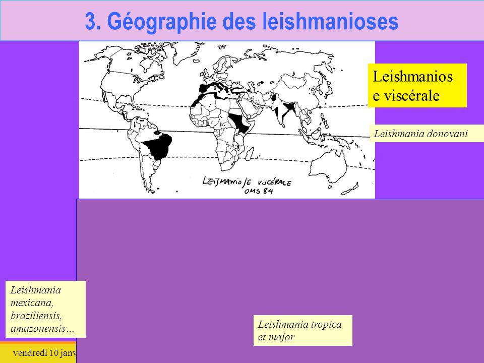 3. Géographie des leishmanioses