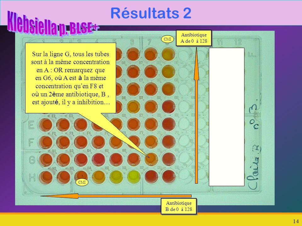 Résultats 2 Klebsiella p. BLSE+