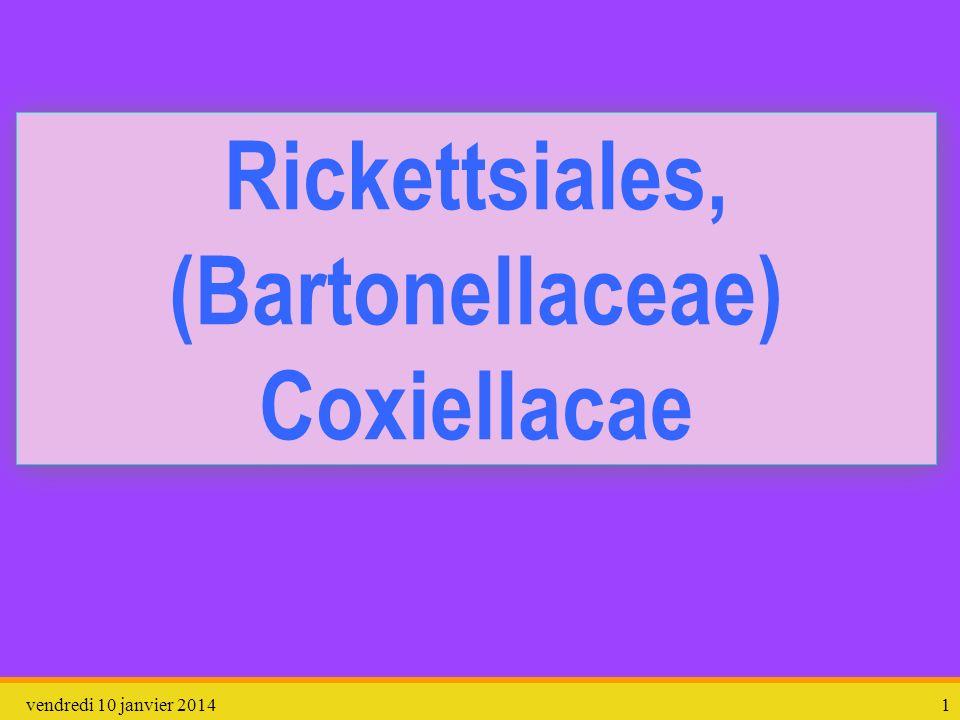Rickettsiales, (Bartonellaceae) Coxiellacae