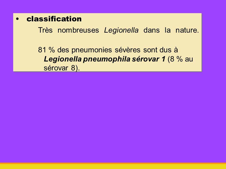 classification Très nombreuses Legionella dans la nature.
