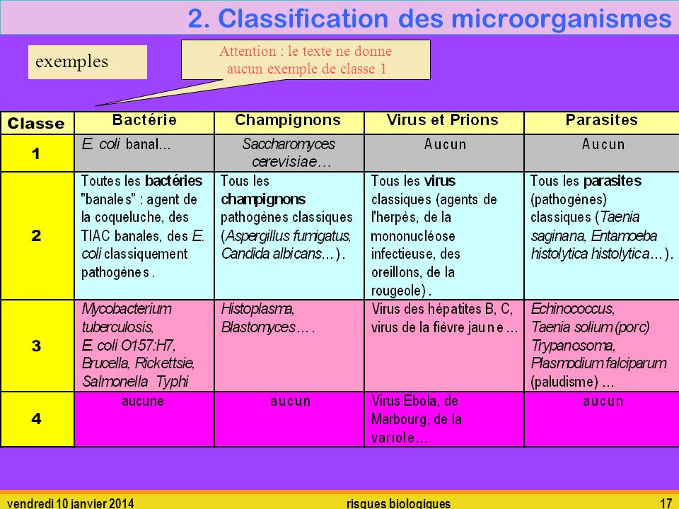 2. Classification des microorganismes