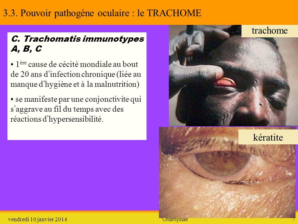 3.3. Pouvoir pathogène oculaire : le TRACHOME
