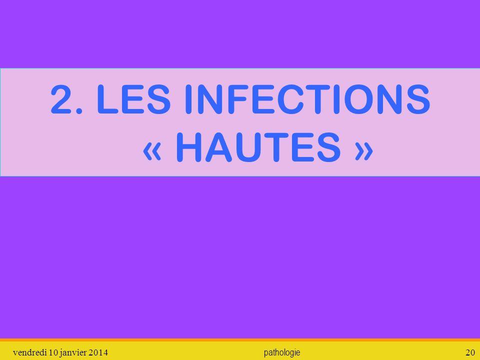 2. LES INFECTIONS « HAUTES »