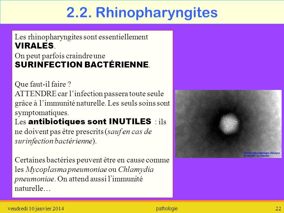 2.2. Rhinopharyngites Les rhinopharyngites sont essentiellement VIRALES. On peut parfois craindre une SURINFECTION BACTÉRIENNE.