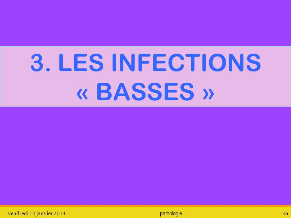 3. LES INFECTIONS « BASSES »