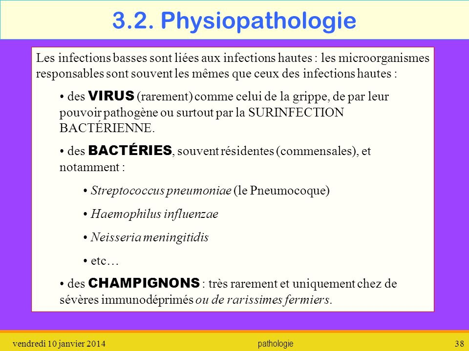 3.2. Physiopathologie