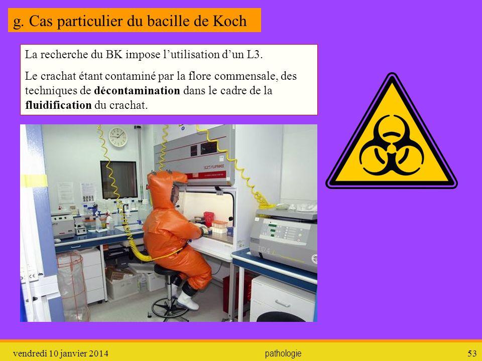 g. Cas particulier du bacille de Koch