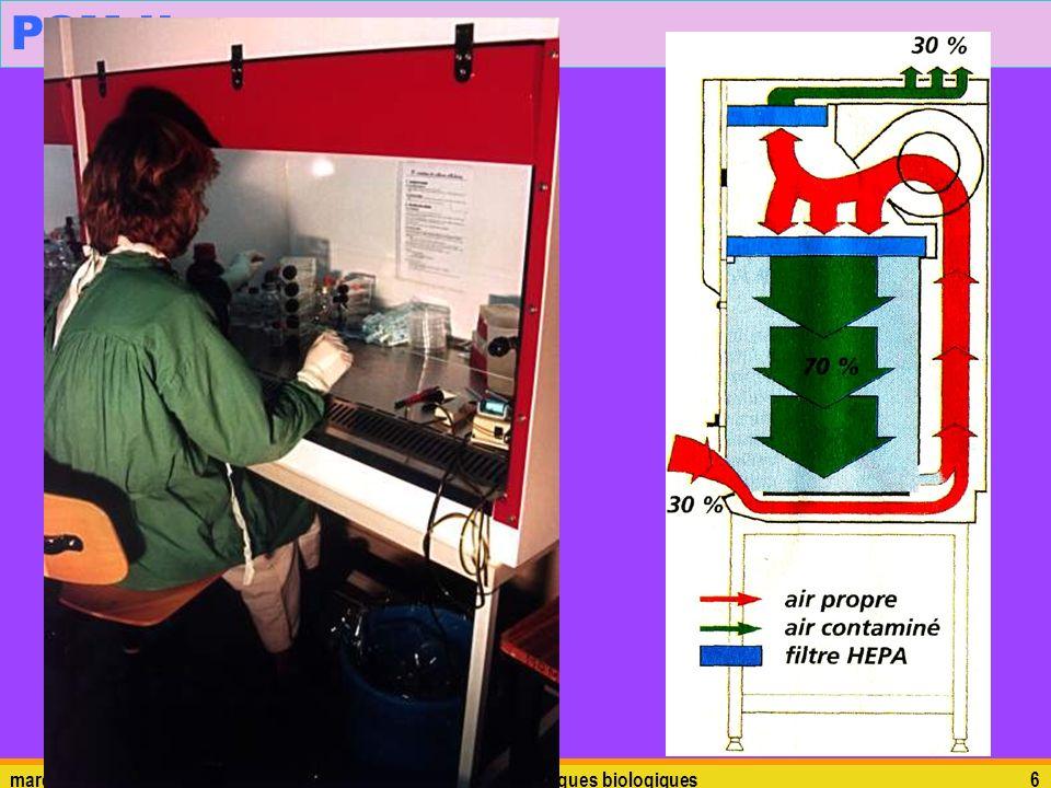 PSM II mardi 5 janvier 2010 risques biologiques