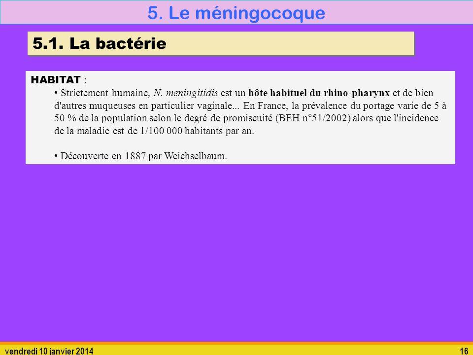 5. Le méningocoque 5.1. La bactérie HABITAT :