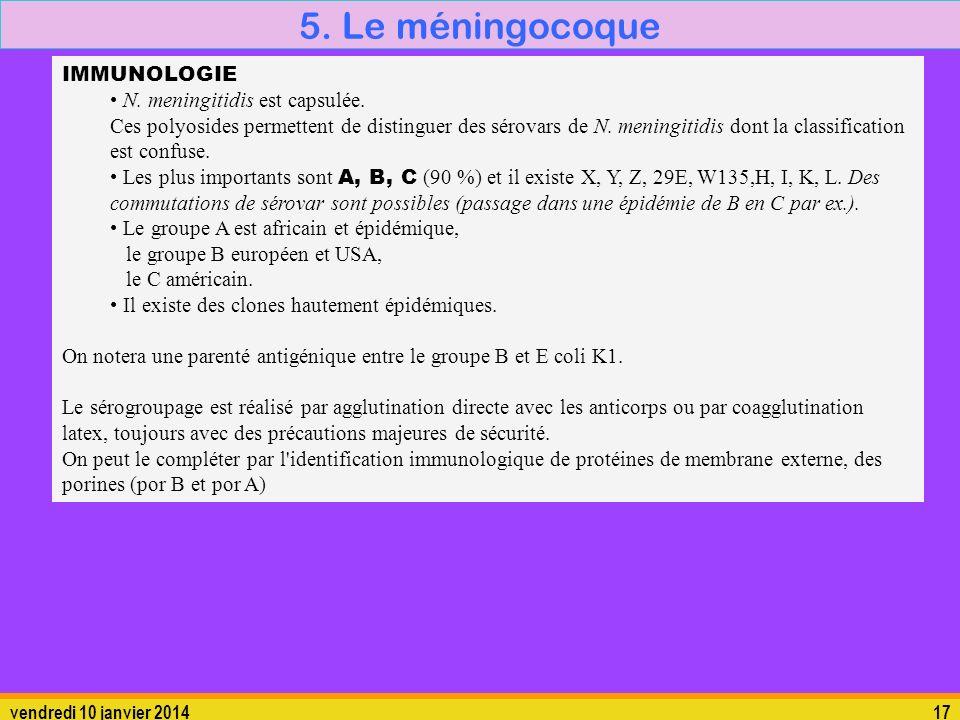 5. Le méningocoque 5.1. La bactérie IMMUNOLOGIE