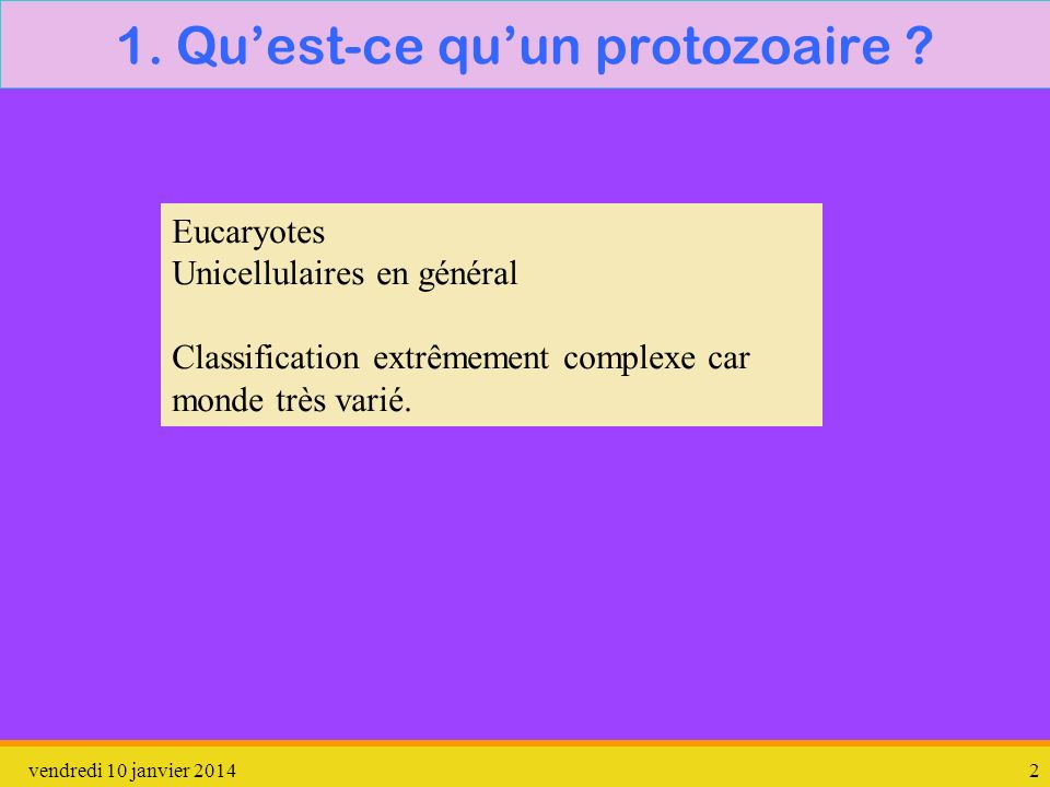 1. Qu'est-ce qu'un protozoaire