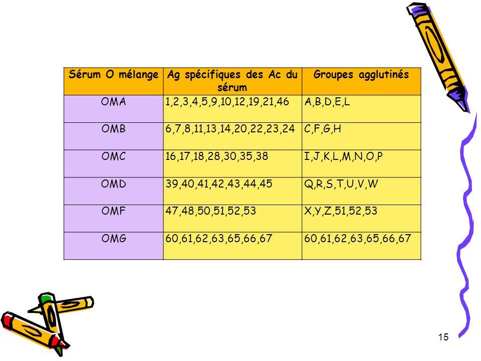 Ag spécifiques des Ac du sérum