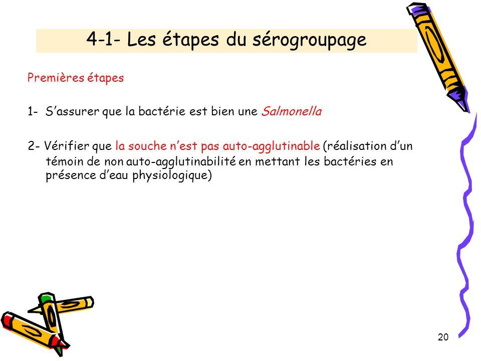 4-1- Les étapes du sérogroupage