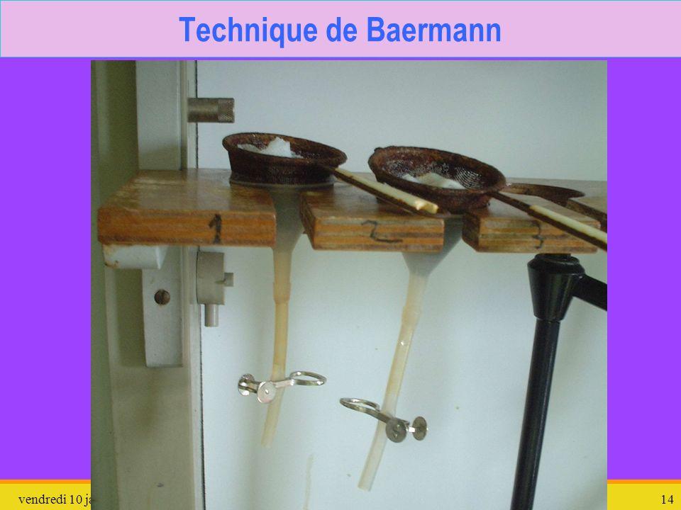 Technique de Baermann dimanche 26 mars 2017 Protozoaires divers