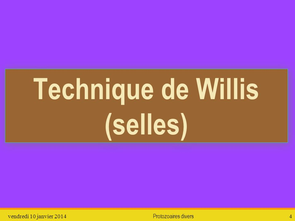 Technique de Willis (selles)