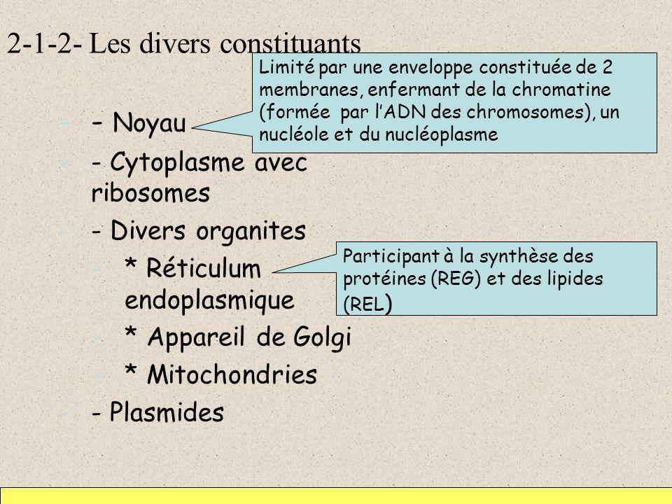 2-1-2- Les divers constituants