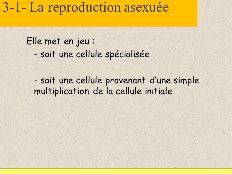 3-1- La reproduction asexuée