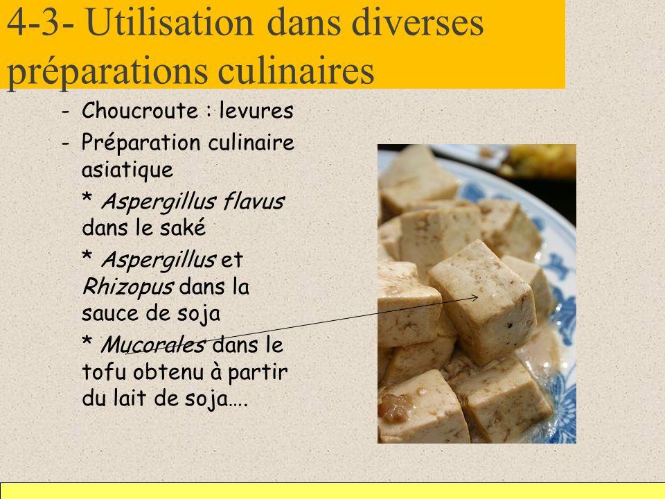 4-3- Utilisation dans diverses préparations culinaires