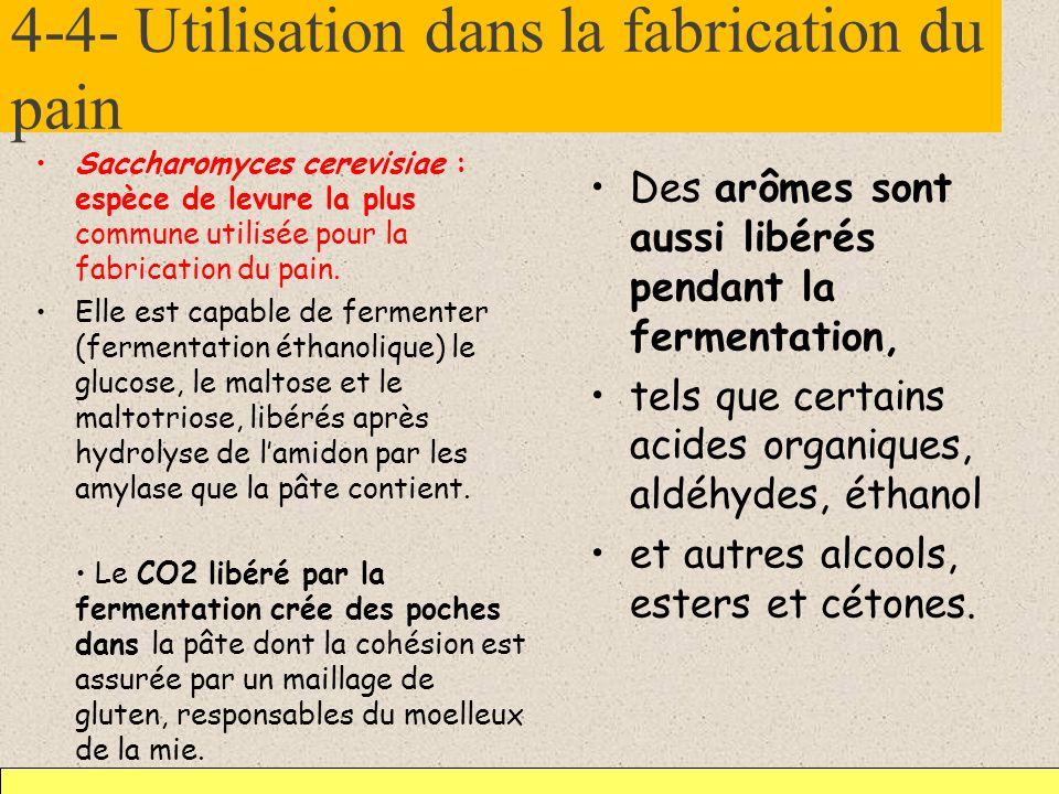 4-4- Utilisation dans la fabrication du pain
