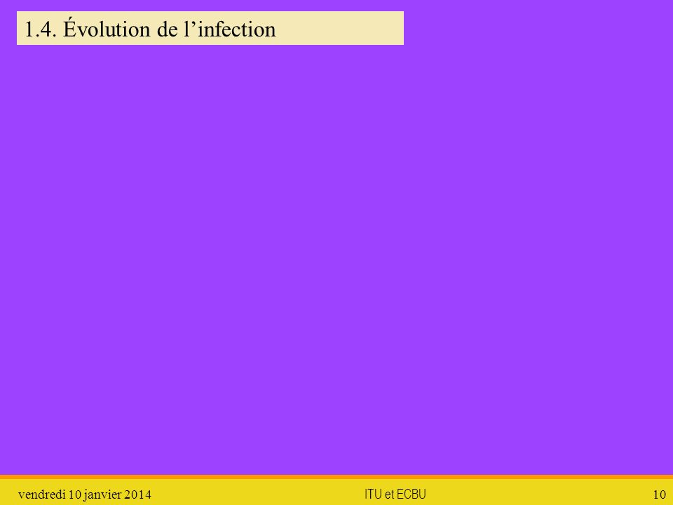 1.4. Évolution de l'infection