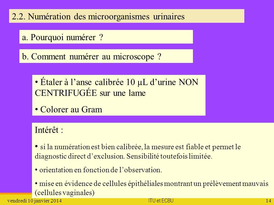 2.2. Numération des microorganismes urinaires