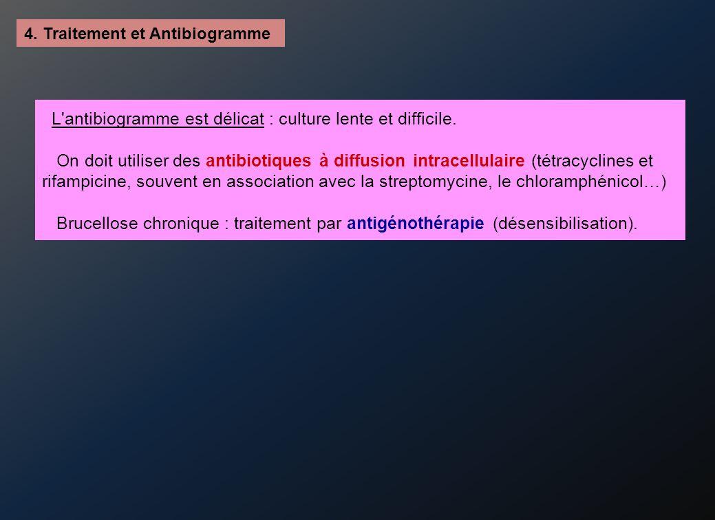 L antibiogramme est délicat : culture lente et difficile.