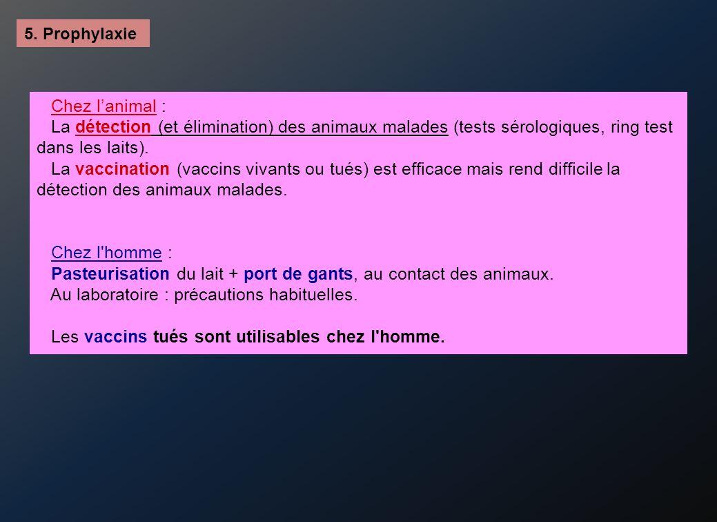 Pasteurisation du lait + port de gants, au contact des animaux.