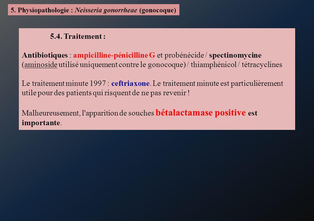 5. Physiopathologie : Neisseria gonorrheae (gonocoque)
