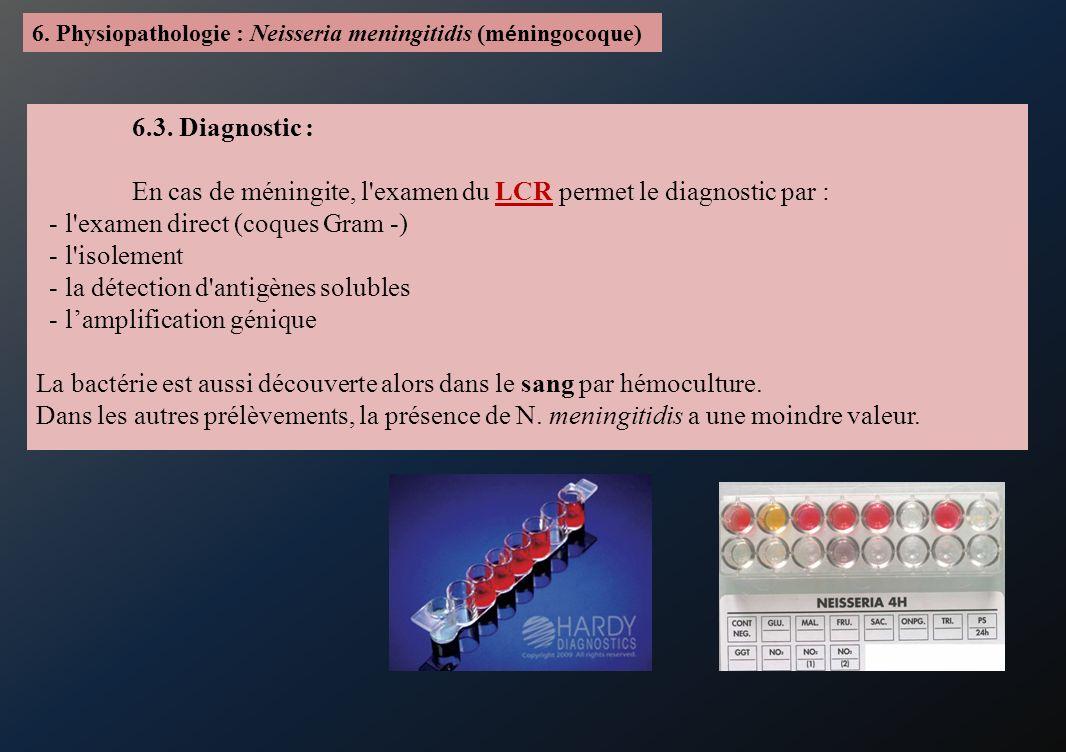En cas de méningite, l examen du LCR permet le diagnostic par :