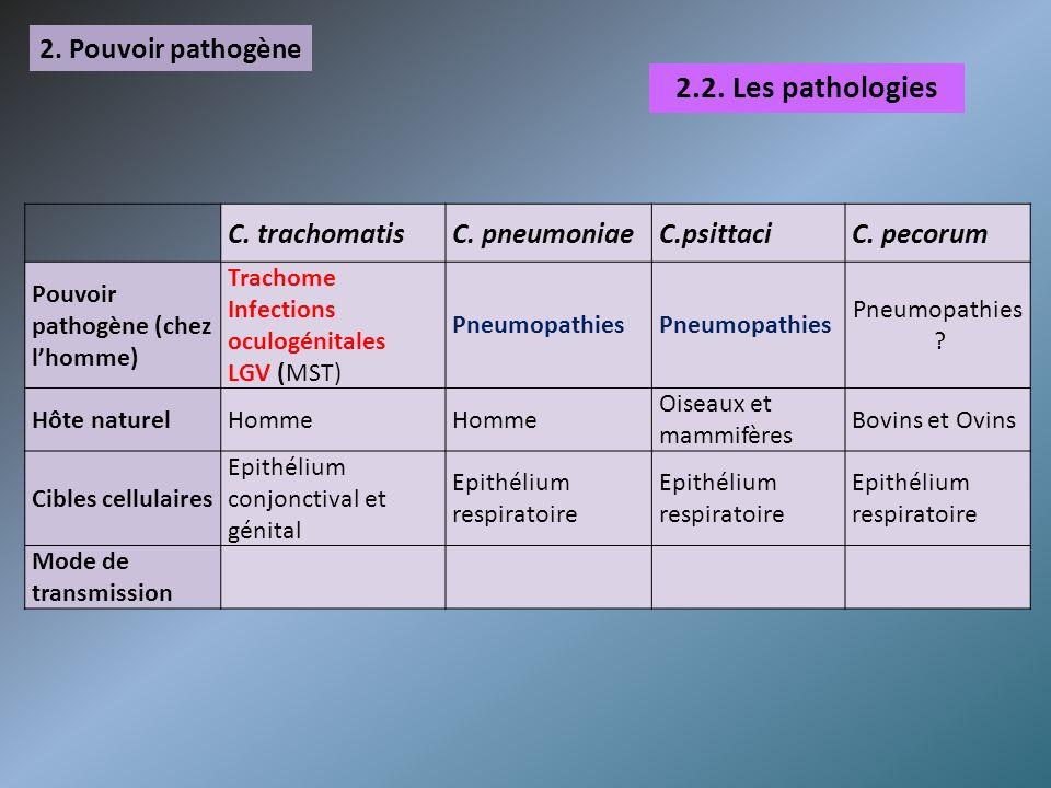 2.2. Les pathologies 2. Pouvoir pathogène C. trachomatis C. pneumoniae