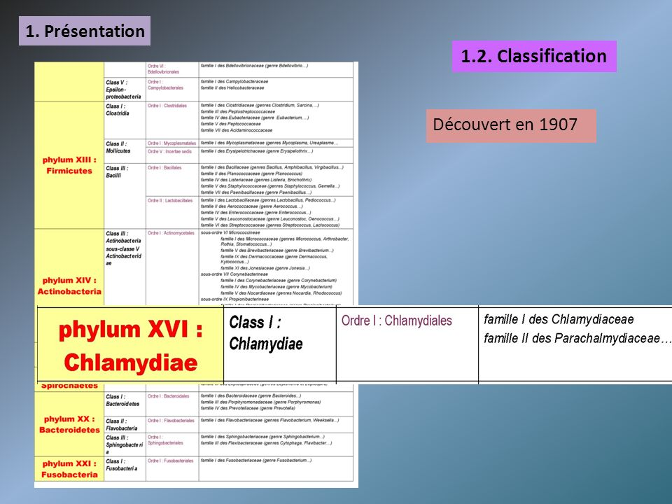 1. Présentation 1.2. Classification Découvert en 1907
