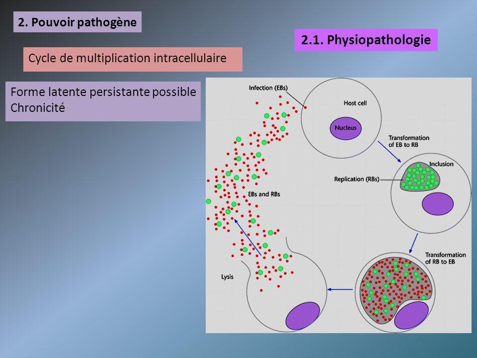 2.1. Physiopathologie 2. Pouvoir pathogène