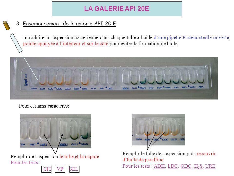 LA GALERIE API 20E 3- Ensemencement de la galerie API 20 E
