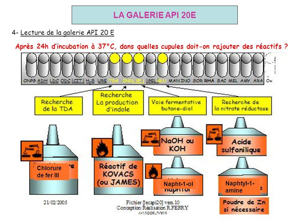 LA GALERIE API 20E 4- Lecture de la galerie API 20 E
