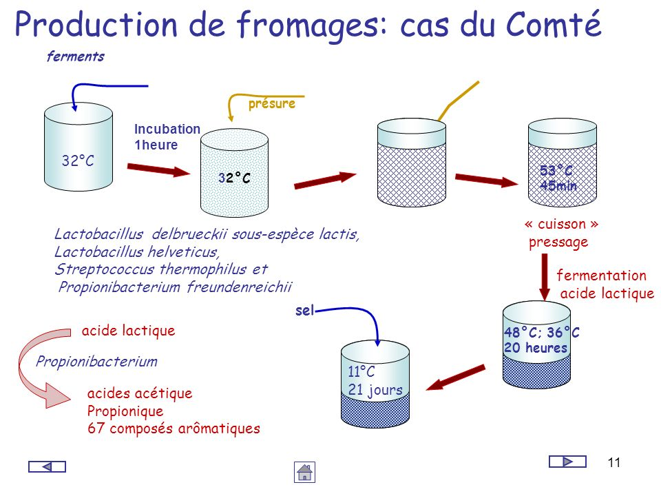 Production de fromages: cas du Comté