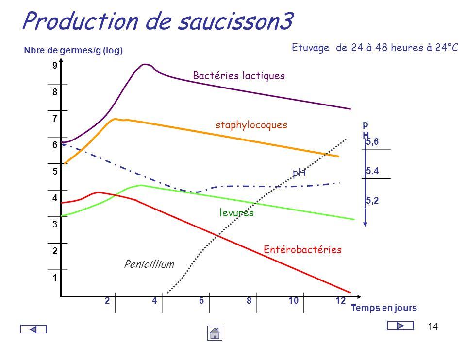 Production de saucisson3