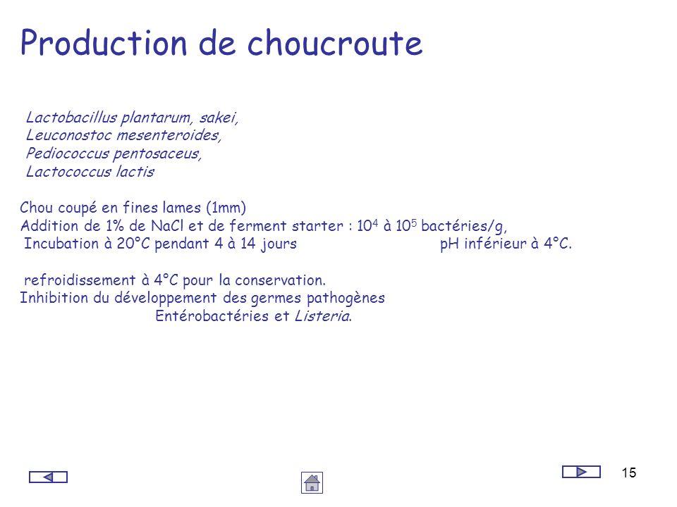 Production de choucroute