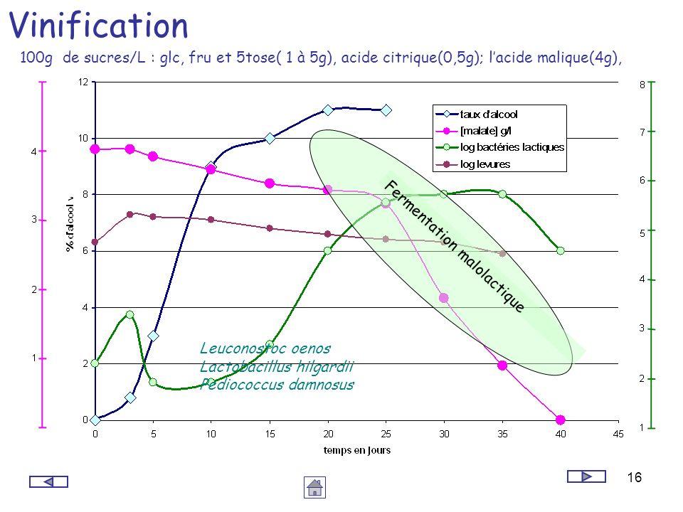 Vinification 100g de sucres/L : glc, fru et 5tose( 1 à 5g), acide citrique(0,5g); l'acide malique(4g),