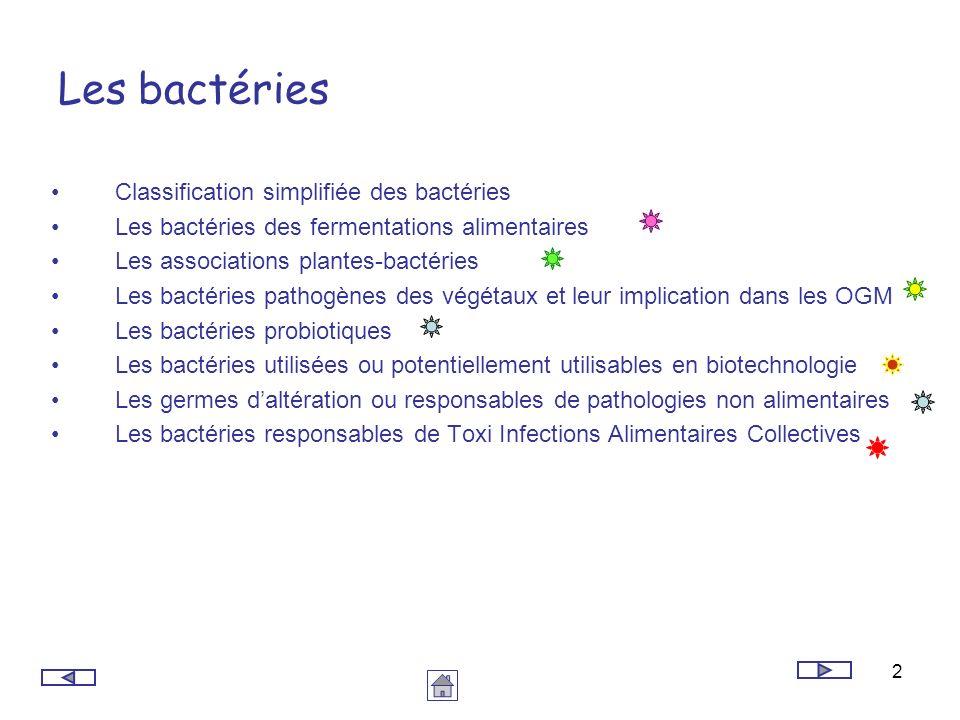 Les bactéries Classification simplifiée des bactéries
