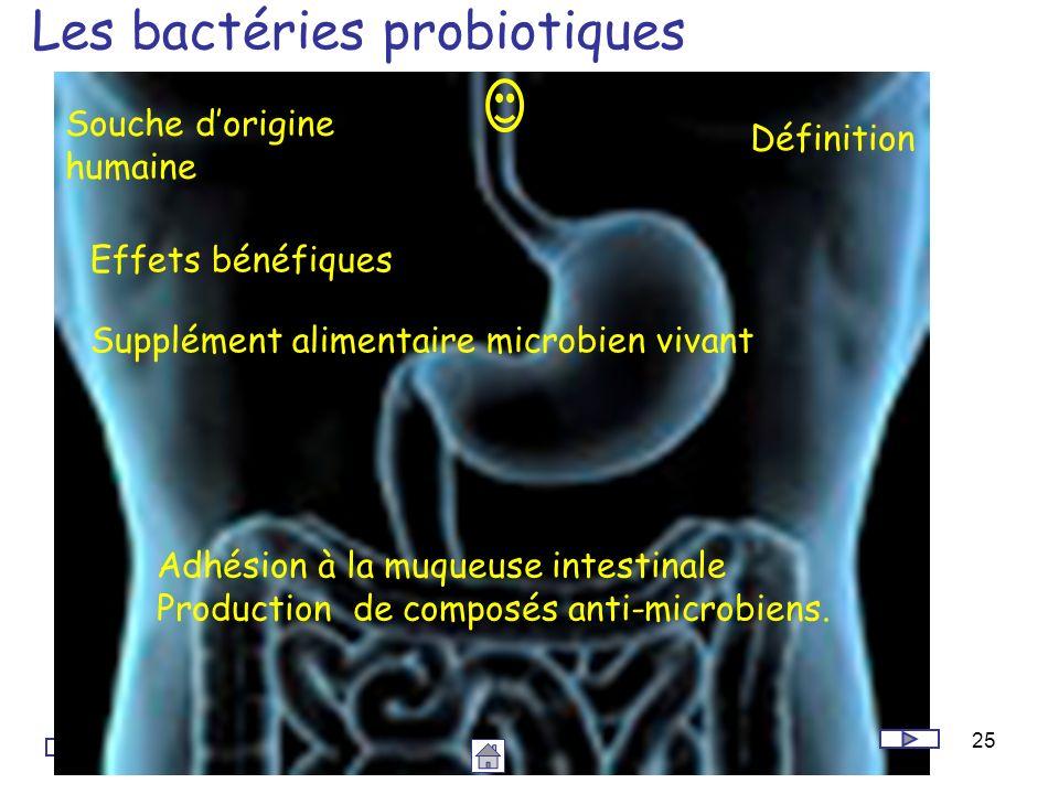 Les bactéries probiotiques