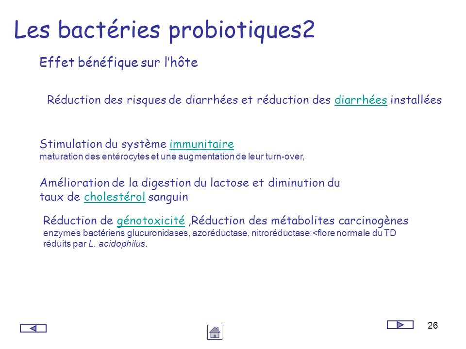 Les bactéries probiotiques2