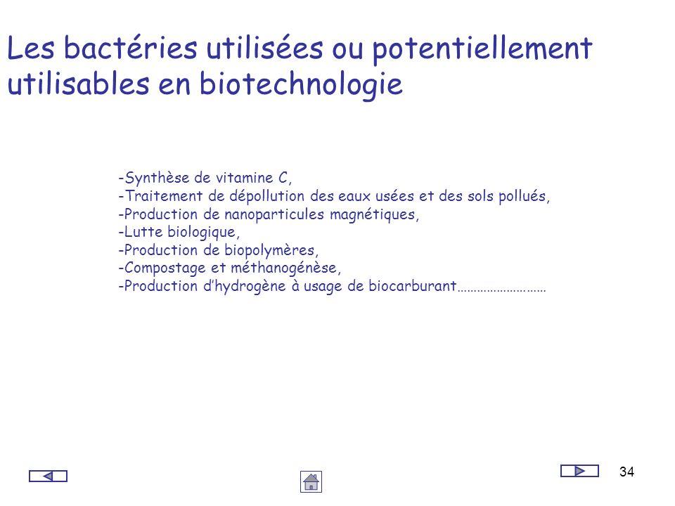 Les bactéries utilisées ou potentiellement utilisables en biotechnologie