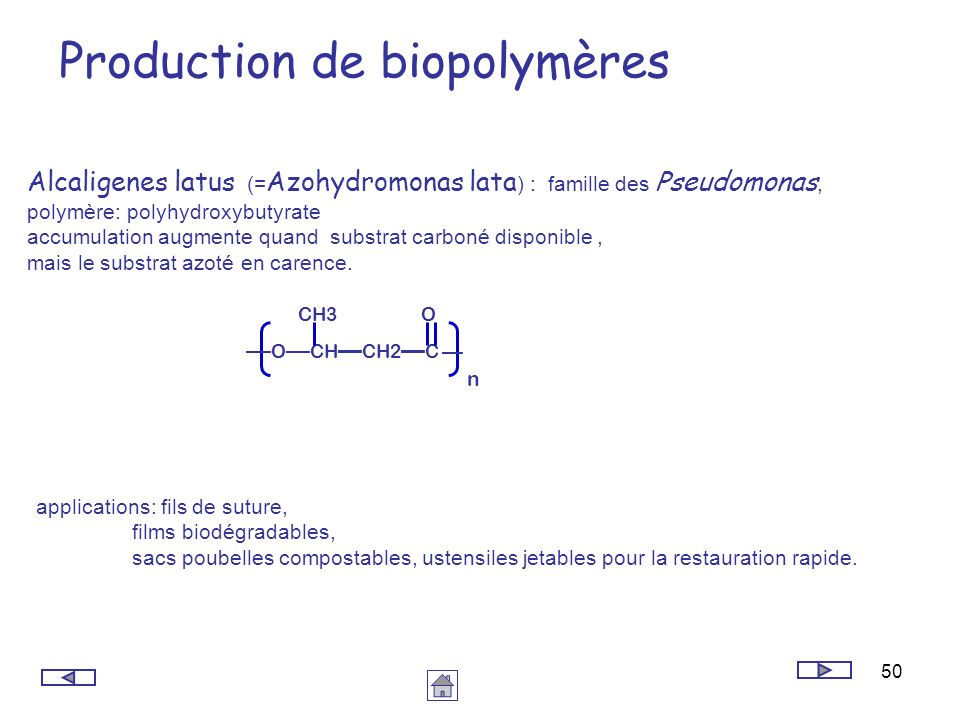 Production de biopolymères