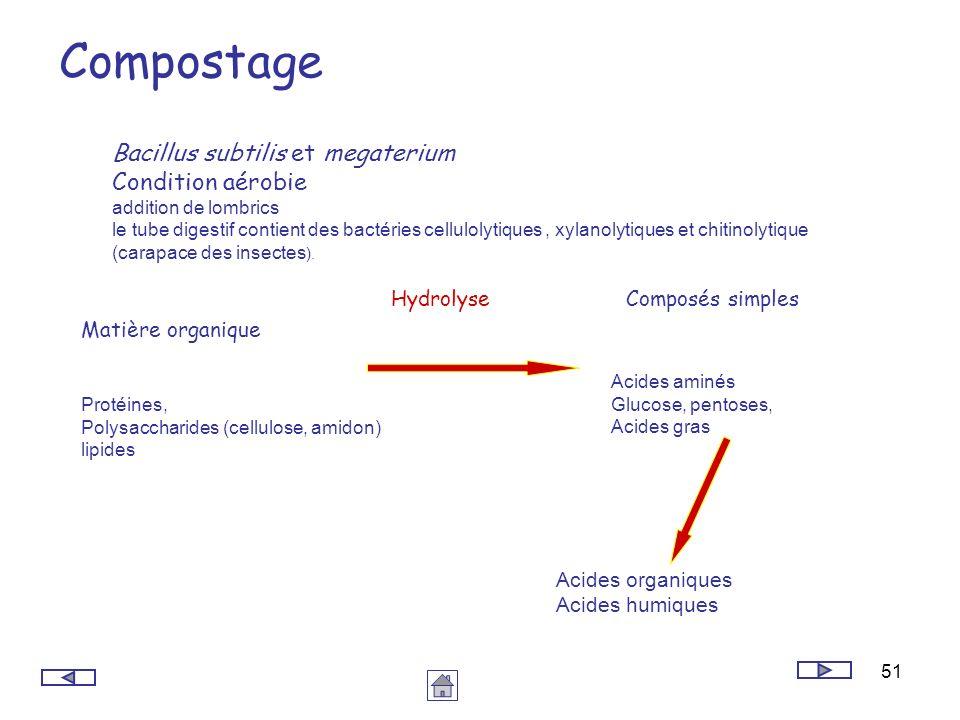 Compostage Bacillus subtilis et megaterium Condition aérobie Hydrolyse