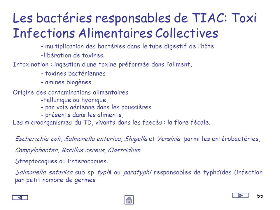 Les bactéries responsables de TIAC: Toxi Infections Alimentaires Collectives