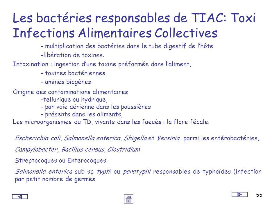 Les bactéries responsables de TIAC: Toxi Infections Alimentaires Collectives