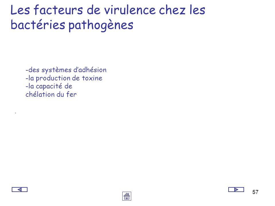 Les facteurs de virulence chez les bactéries pathogènes